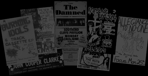 the origins and history of punk rock in america Punk rock is a genre formed  and blink-182 finally brought mainstream success of punk music to america, and punk rock has remained a strong  profile history.
